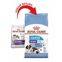 Royal Canin (Роял Канин) Giant Starter - первый твердый корм для щенков гигантских пород, 15кг.
