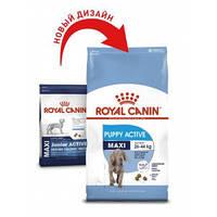 Royal Canin (Роял Канин) Maxi Puppy Active - корм для щенков крупных пород, 4кг