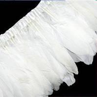 Перьевая тесьма из гусиных перьев. Цвет Белый. Перо 16-20см. Цена за 0,5м.