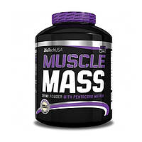 Muscle Mass 2.27 кг (гейнер), фото 1