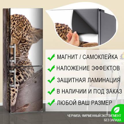 Фотообои на холодильник, Самоклейка, 180 х 60 см, Лицевая, фото 2