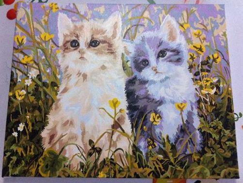 Рисование по номерам Голубые глаза и лютики (Котята) худ. Вейерс Персис Клейтон (G294)