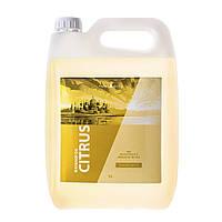 """Профессиональное массажное масло """"Citrus"""" 5 литров для массажа (Цитрусовое)"""