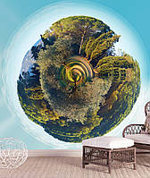 "3D фотообои ""Панорама леса"""