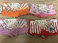Трусики для девочек шортиками «Милашка» до 10 лет (NB2204)