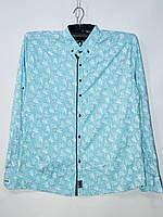 Рубашки мужские оптом Турция (M-3XL норма)