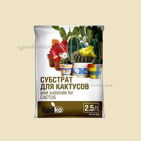 Садко Субстрат для кактусов 2,5л, фото 2