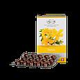 Релакс  Вивасан зверобой с витаминами В и С швейцарский натуральный 60 капс, фото 2
