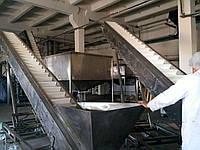 Конвейер для пищевой промышленности., фото 1