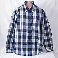 Новая мужская рубашка Senator, воротник 42 см