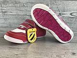 Кроссовки детские Clibee 22 р 14 см, фото 9