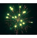 Салют FIREWORKS WORLD 30мм. 19 выстр. Пиротехника и фейерверки, фото 5