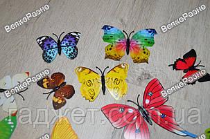 Наклейки обьемные 3D/3Д бабочки на стену,холодильник для декора - серия радуга, фото 2