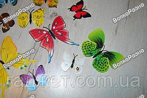 Наклейки обьемные 3D/3Д бабочки на стену,холодильник для декора - серия радуга, фото 3