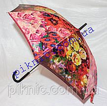 Женский зонт трость полуавтомат. Зонт от дождя, фото 2