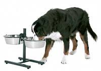 Как выбрать кормушку для собак