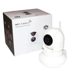 Камера видеонаблюдения IP 163E H0098
