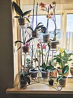 Азалия-2, подставка для цветов на 7 чаш, фото 1