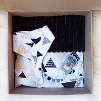 """Подарочный набор для новорожденного с силиконовым прорезывателем """"Этника енот mini"""", фото 1"""