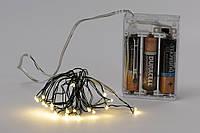 Гирлянда 20 мини-LED: 1 линия 2 метра, 20 диодов/ нить, цвет - тёплый белый, постоянное свечение, адаптер на 3AA батарейки, цвет провода - зеленый.