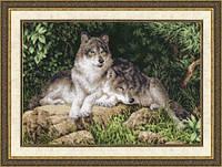 Набор для вышивки крестом Золотое Руно ДЖ-027 «Лесные хищники»