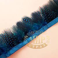 Тесьма перьевая из пера цесарки, цвет Cobalt,  0,5м, высота 5,5 см