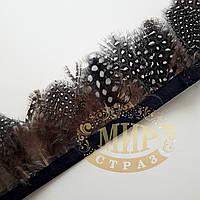 Тесьма перьевая из пера цесарки, цвет Grey, 0,5м, высота 5,5 см