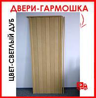 Двери гармошка глухая метровая - цвет светлый дуб. Нестандартные размеры. Ширина 100см.