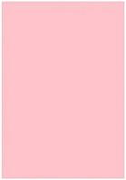 Папір кольоровий Profi А4 рожевий 160 г/м2