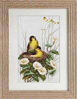Набор для вышивки крестом Luca-S B2240 «Птицы в гнезде»