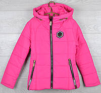 """Куртка демисезонная """"Gucci реплика - 2"""" для девочек. 7-8-9-10-11 лет (122-146 см). Малиновая. Оптом., фото 1"""