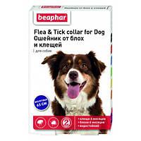 Нашийник Beaphar 65см (від бліх і кліщів) для собак