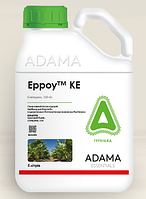Гербіцид Ерроу, к.е - 5 л | ADAMA