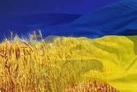 График работы. День независимости Украины.