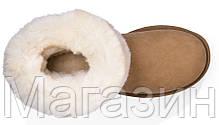 Мужские сапоги UGG Australia Classic Short Chestnut угги Австралия рыжие, фото 3