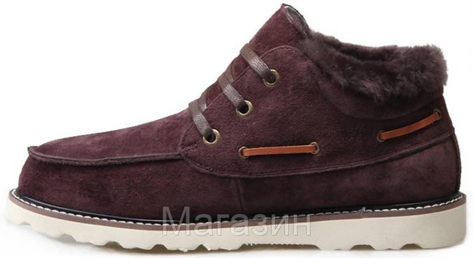 Зимние мужские ботинки UGG Australia David Beckham Lace Brown Угги Австралия Девид Бекхем коричневые