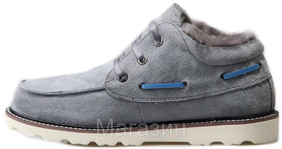 Зимние мужские ботинки UGG Australia David Beckham Lace Grey угги Девид Бекхем серые