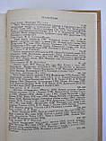 Історія російської літератури 19-го століття. Частина 2. Том 2, фото 4