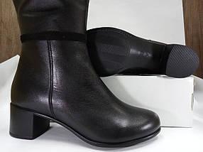 Женские демисезонные сапожки  МИДА 22347 черные, кожаные на маленьком каблуке., фото 3