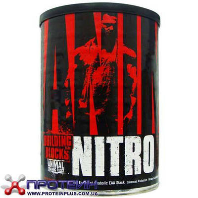 Аминокислота Animal Nitro