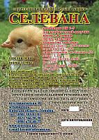 Комбикорм СЕЛЕВАНА для кур-несучек от 1 до 8 недель 20кг
