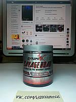 Dynamik Muscle Savage Roar 30 порций, фото 1