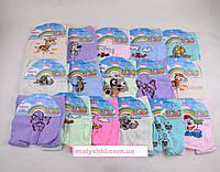 Колготки для девочки под памперс  6-12 месяцев.