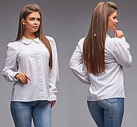 Блуза с длинным рукавом на манжете / софт / Украина 5-337, фото 1