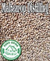 В продаже появился солод для виски Malteurop Distilling.