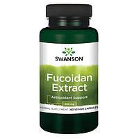 100% Чистейший Максимально Эффективный Экстракт Фукоидана, 500 мг 60 капсул, фото 1