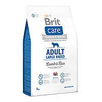 Сухой корм Brit Care Adult Large Breed Lamb & Rice для взрослых собак крупных пород, 3 кг