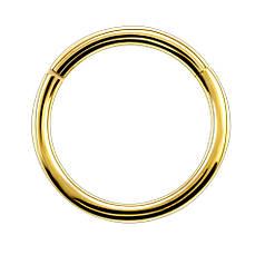 Кольцо сегментное (хир. сталь, золотистый)