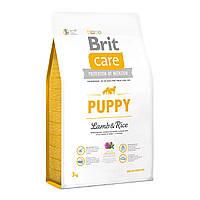 Сухой корм Brit Care Puppy Lamb с ягненком и рисом для щенков и молодых собак всех пород, 3 кг