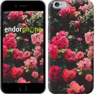 Чехол на iPhone 6 Куст с розами